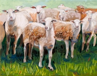 Eight Sheep