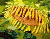 Sunflower Sleeping III