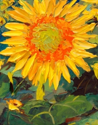 Sunflower Study 152