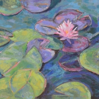 Print of Lily Pads with One Flower