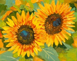 Sunflower Study 154