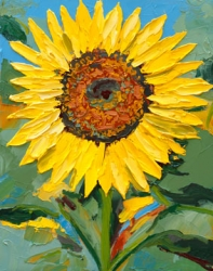 Sunflower Study 153