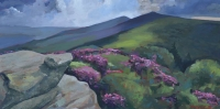 "60"" x 30"" Appalachian Trail at Roan Mountain"